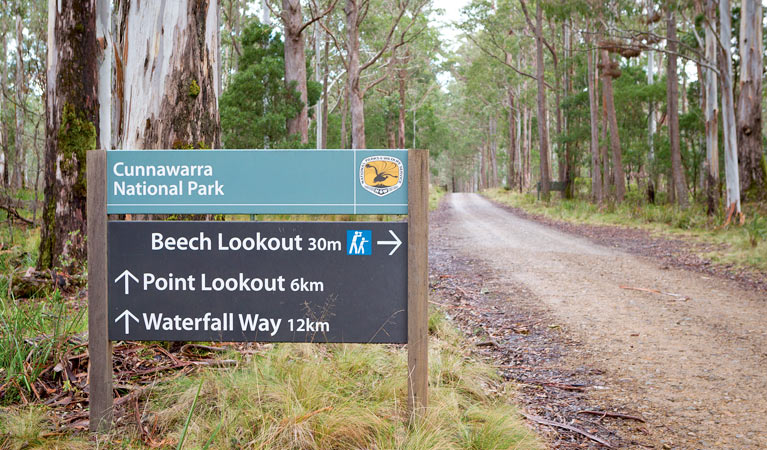 Beech lookout - Tourism Adelaide