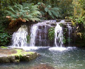 Barrington Tops National Park Walks - Tourism Adelaide
