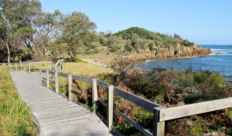 Mimosa Rocks walking track - Tourism Adelaide