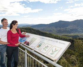 Whyte Hills Lookout - Tourism Adelaide