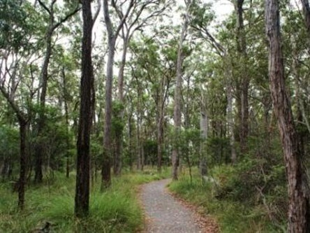 Caboolture Regional Environment Education Centre - Walking Trails - Tourism Adelaide