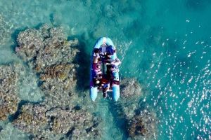 Glass-bottom boat tour with Whitehaven Beach - Tourism Adelaide