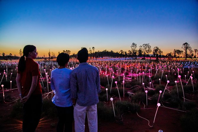 Uluru Field of Light Sunrise Tour - Tourism Adelaide