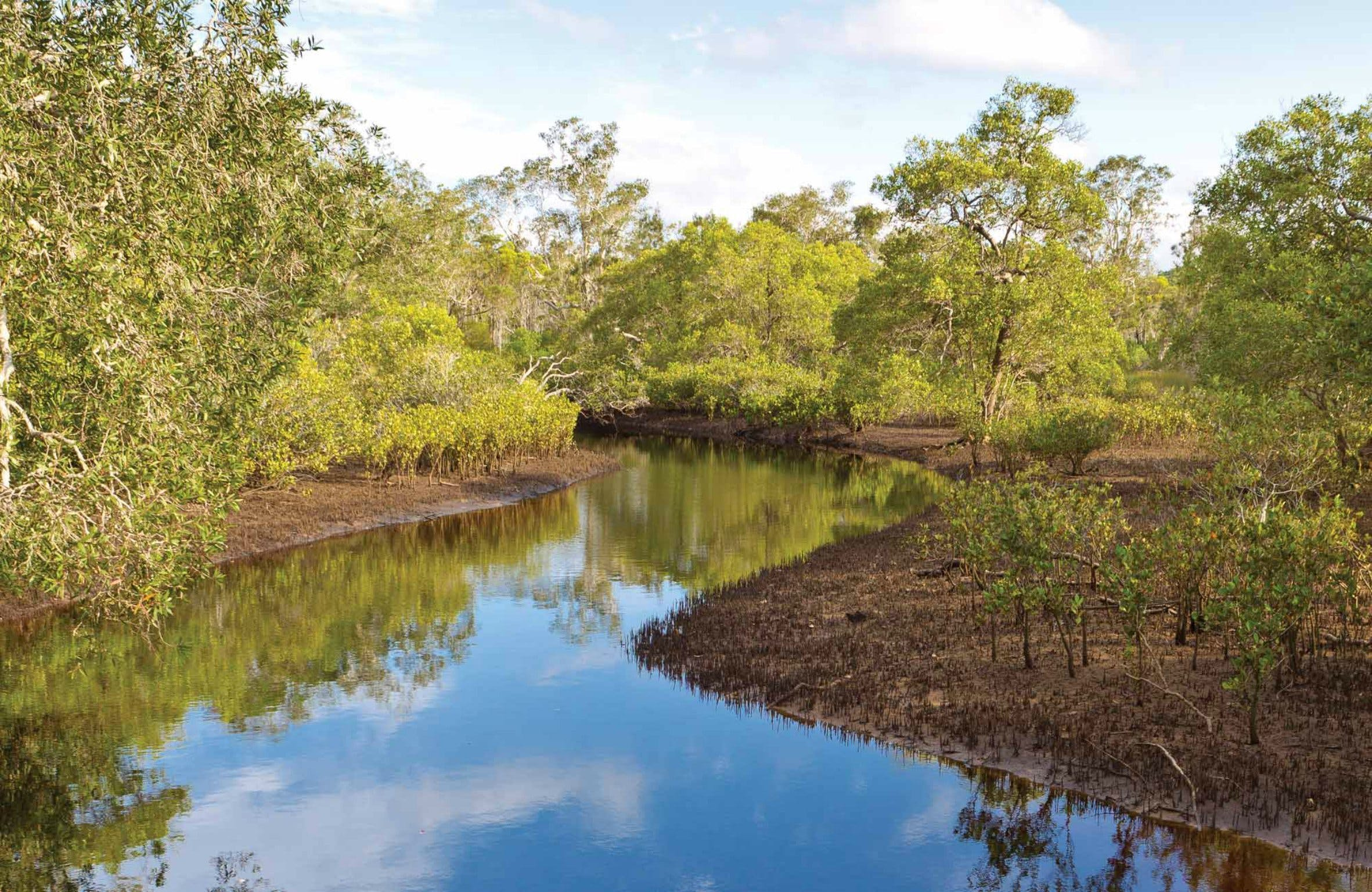 Canoe Evans River Paddle Route - Tourism Adelaide