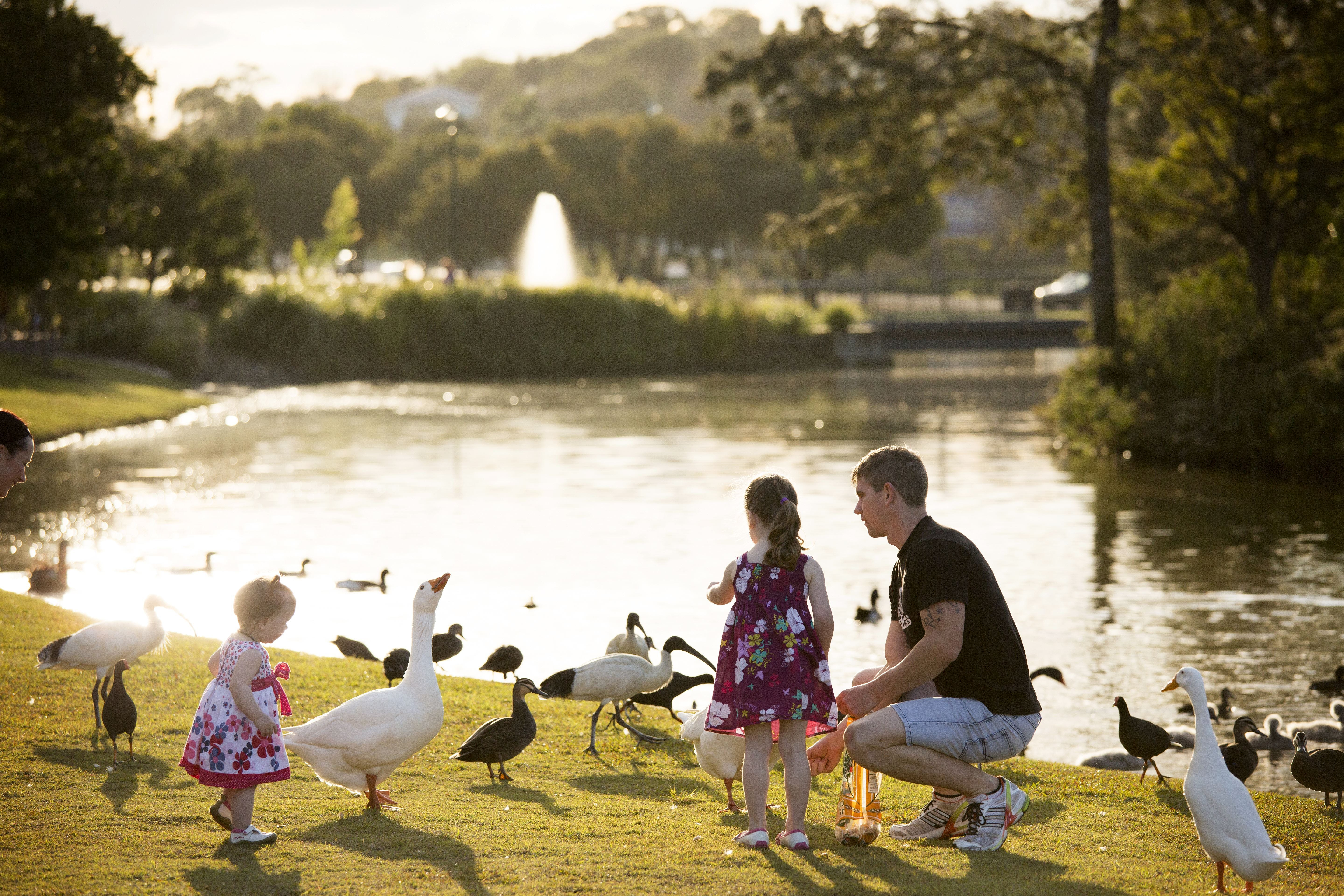 Lake Alford Recreational Park - Tourism Adelaide