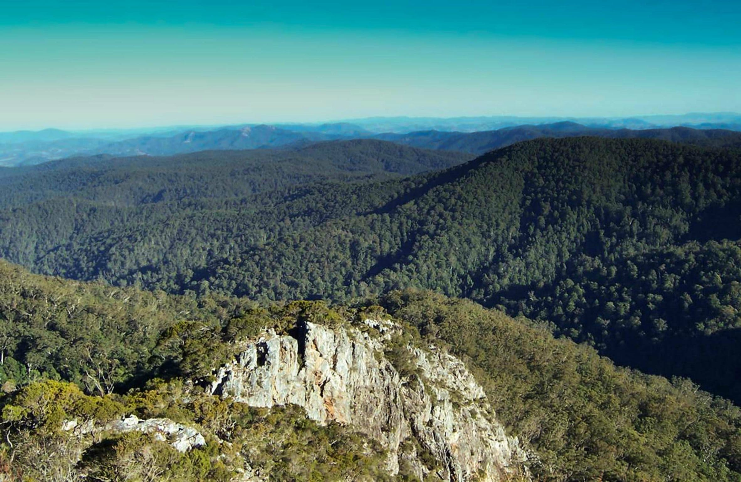 Tapin Tops National Park - Tourism Adelaide