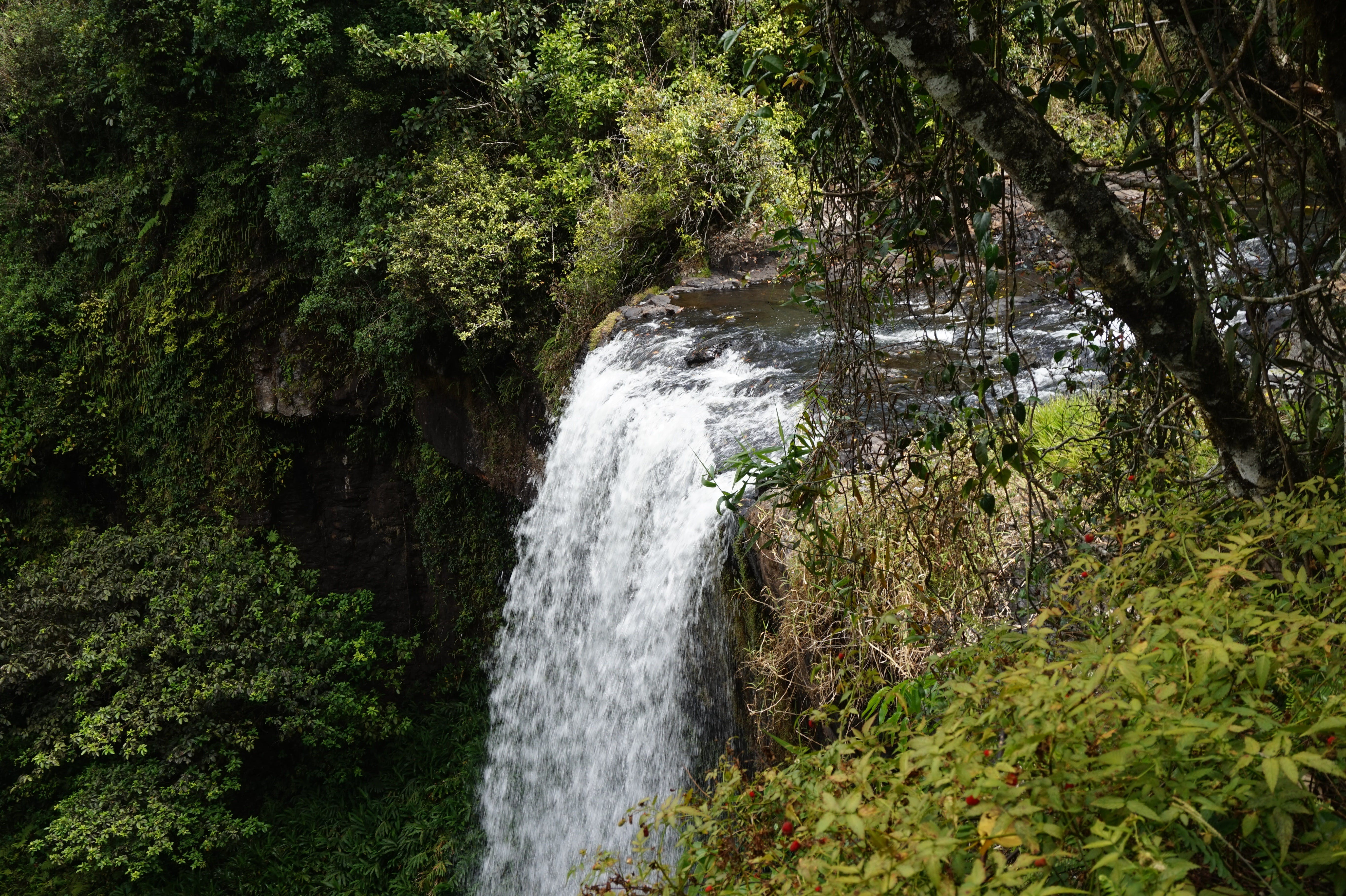 Zillie Falls - Tourism Adelaide