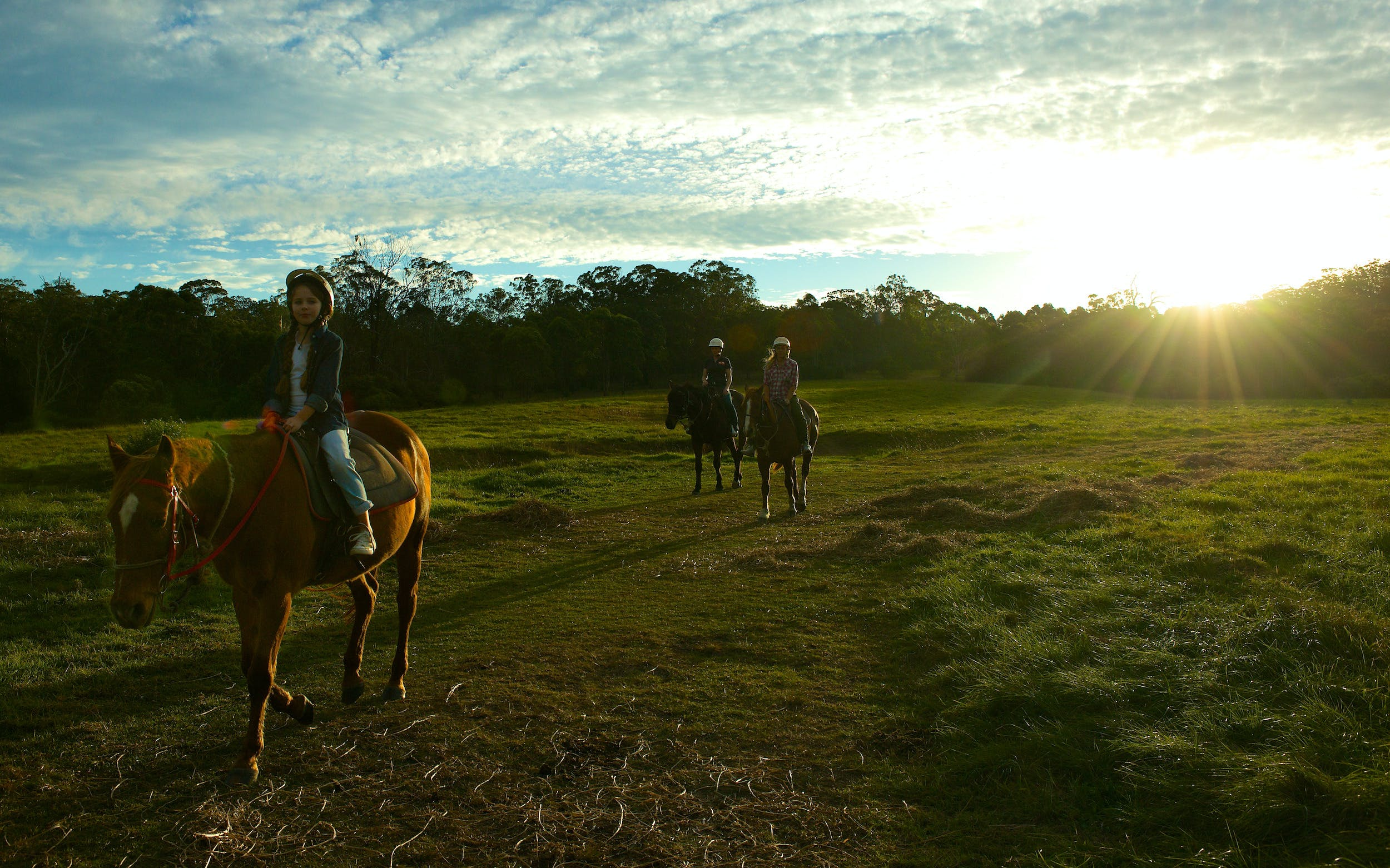 Scenic NSW Horse Riding Centre - Tourism Adelaide