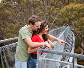 Valley of the Giants Tree Top Walk - Tourism Adelaide