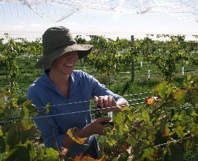 Kingsdale Wines - Tourism Adelaide