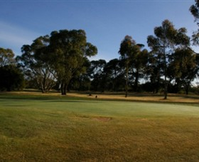 Winchelsea Golf Club - Tourism Adelaide