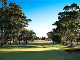 Loxton Golf Club - Tourism Adelaide