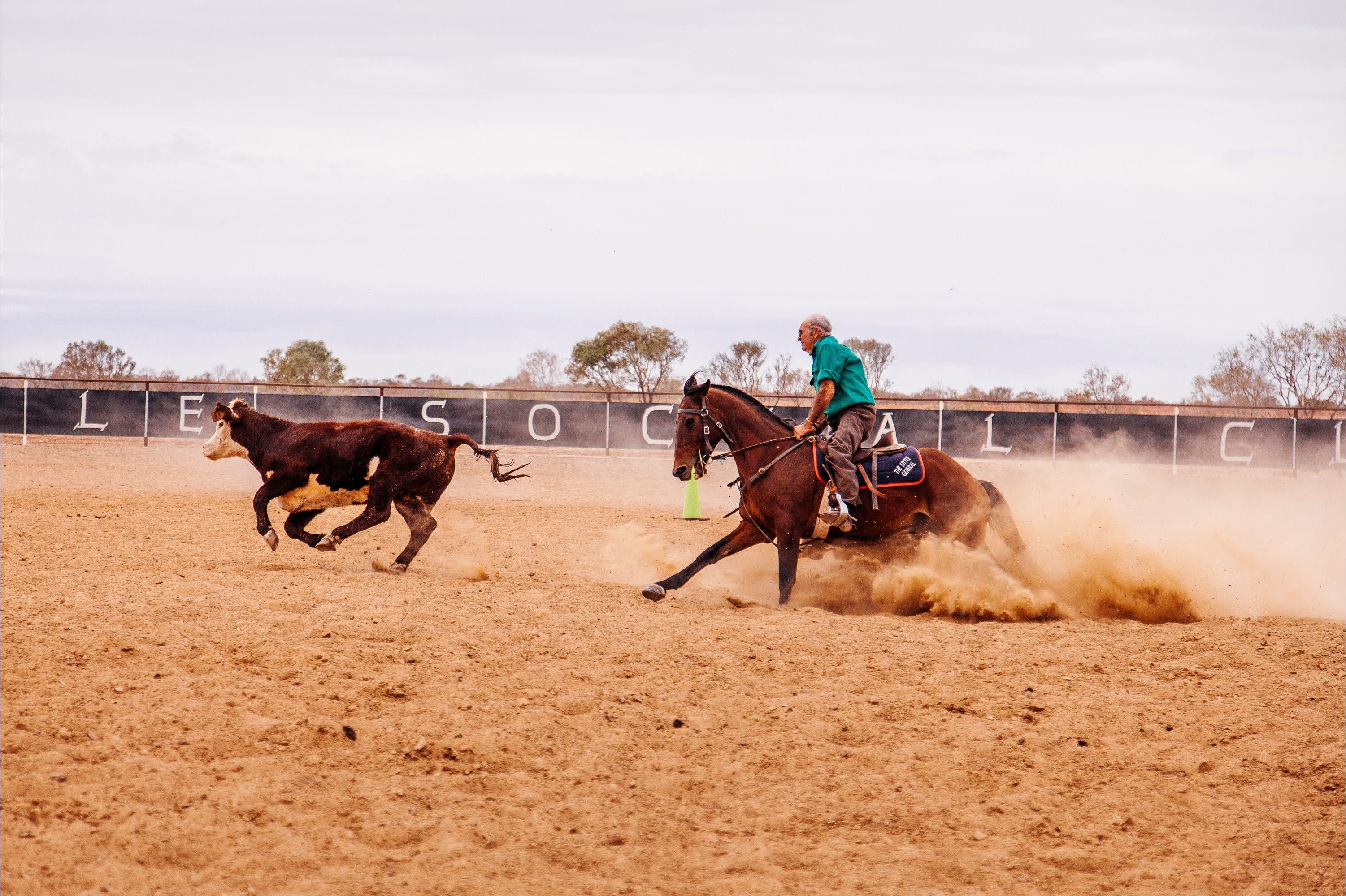 Birdsville Campdraft  Rodeo and Bronco Branding - Tourism Adelaide