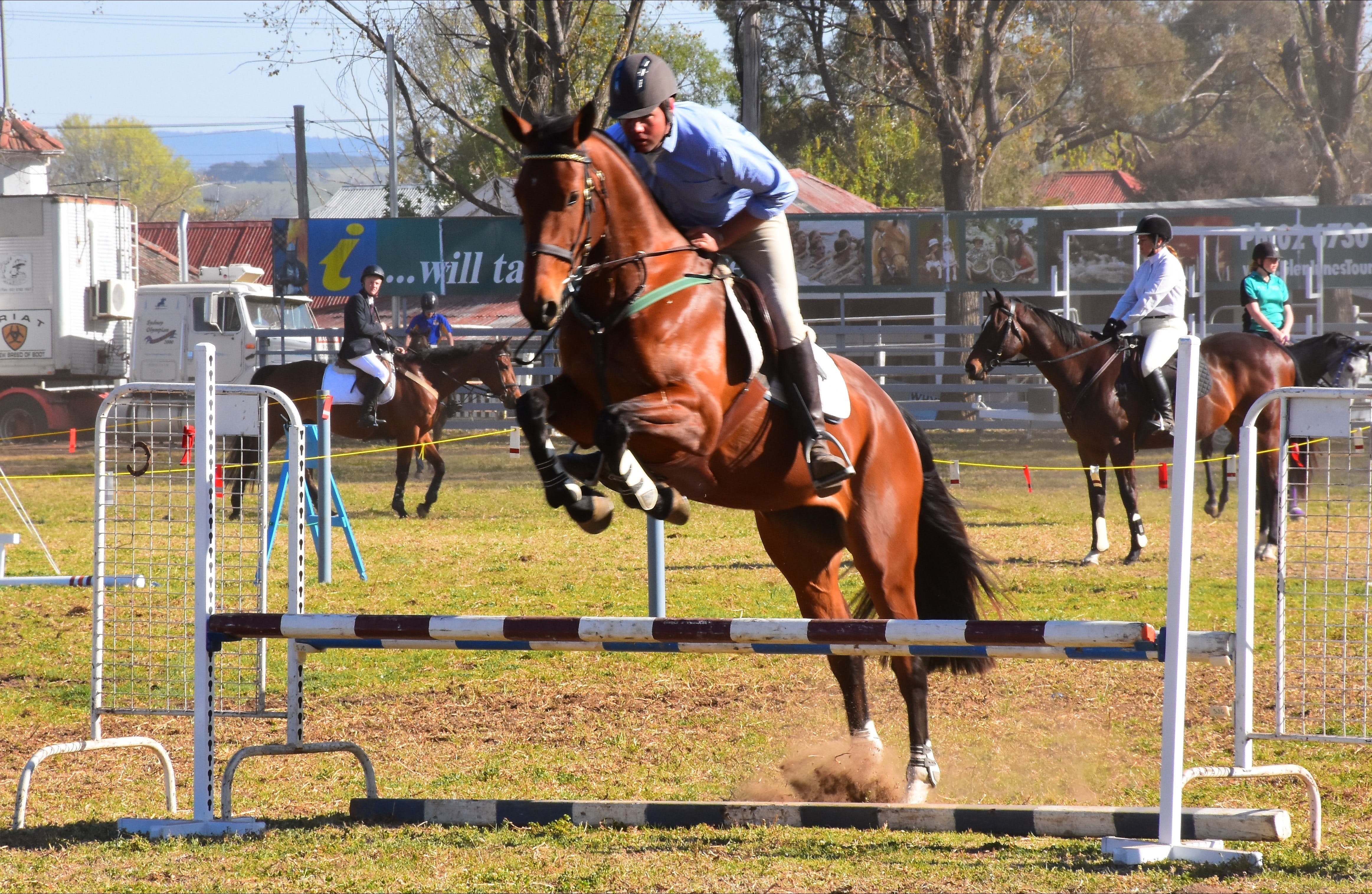 Glen Innes Pastoral and Agricultural Show - Tourism Adelaide
