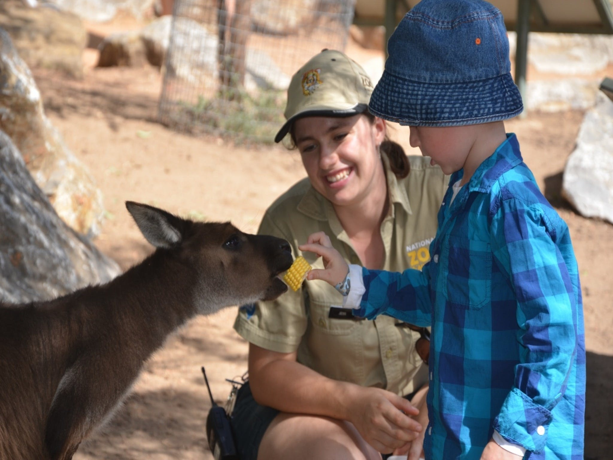 Mums and Cubs And Dads too - Tourism Adelaide